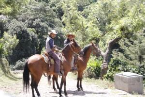 Antigua-Zip-4-4